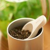 【Soil】茶さじ